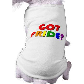 Gay Pride Gift T-Shirt