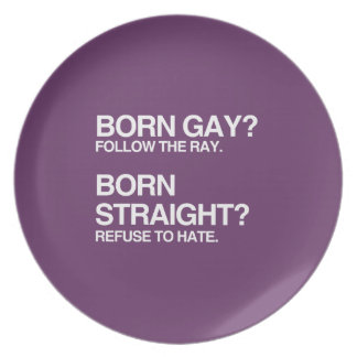 GAY RAY STRAIGHT HATE DINNER PLATE