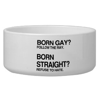 GAY RAY STRAIGHT HATE PET BOWL