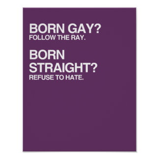 GAY RAY STRAIGHT HATE POSTERS