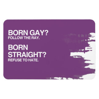 GAY RAY STRAIGHT HATE RECTANGLE MAGNETS