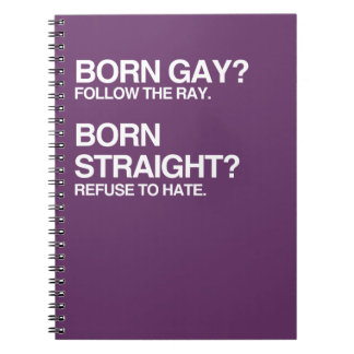 GAY RAY STRAIGHT HATE SPIRAL NOTE BOOK