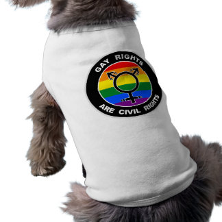 Gay Rights Are Civil Rights Tee