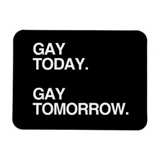 GAY TODAY. GAY TOMORROW. FLEXIBLE MAGNETS