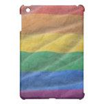 GAYFLAG1 iPad MINI CASES