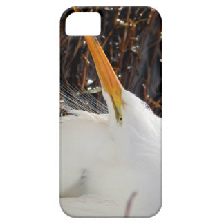 Gaze iPhone SE/5/5s Case
