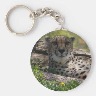 Gaze of the Cat: Cheetah Keychain