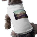 Gazebo, Central Park, New York City Prenda Mascota