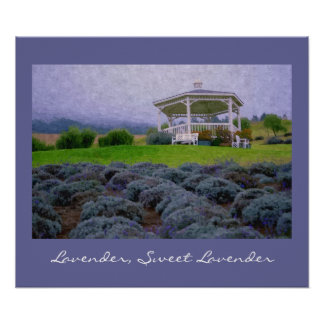 Gazebo in Lavendar Flowers Field, Art Print