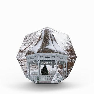 Gazebo in the Snow Award