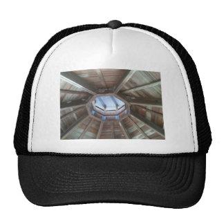 Gazebo roof: bird nest near hornets nests trucker hat