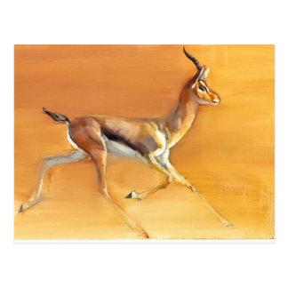 Gazelle árabe 2010 tarjetas postales