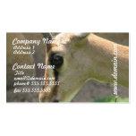 Gazelle Business Cards