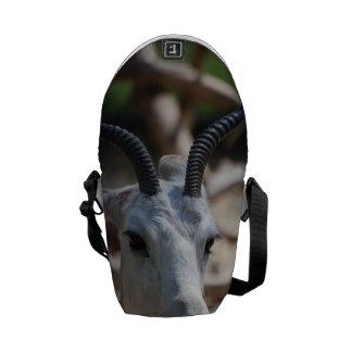 Gazelle del Dama Bolsas De Mensajería