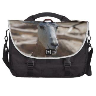 Gazelle del Dama Bolsas De Portátil