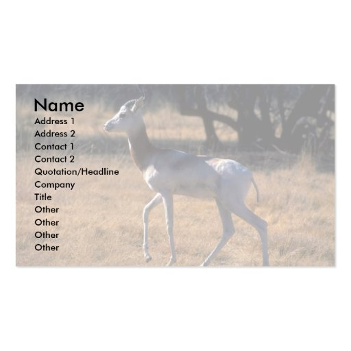 Gazelle del Dama Tarjetas De Visita