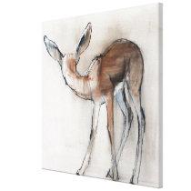 Gazelle Fawn Canvas Print