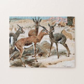 Gazelle Jigsaw Puzzle