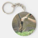Gazelle Keychain