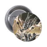 Gazelle Pair Pin