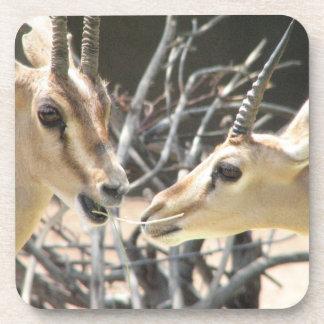 Gazelle Pair Set of Six Coasters