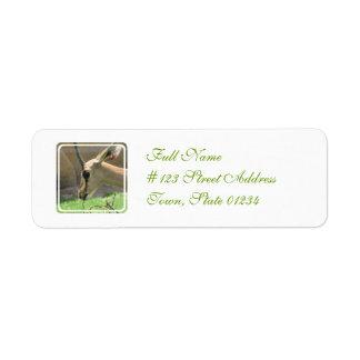 Gazelle Return Address Mailing Label Return Address Label