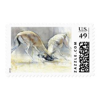 Gazelles de la arena 2009 4 timbre postal