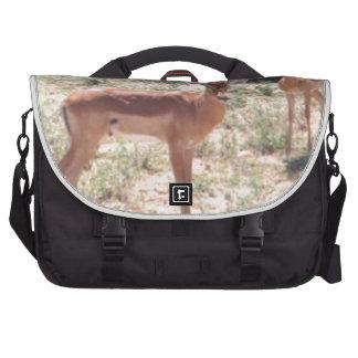 Gazelles en el salvaje bolsa para ordenador
