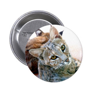 Gazely Stare | Customizable Pinback Buttons