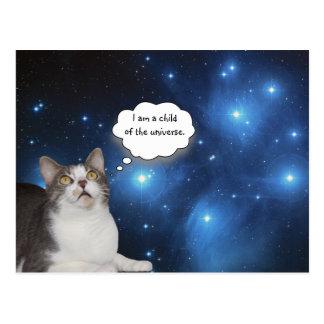 Gazer divertido de la estrella del gato postal