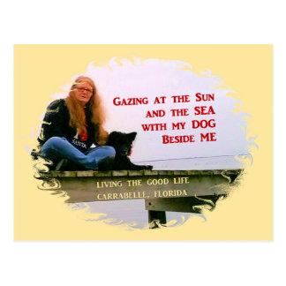 Gazing At The Sun Postcard