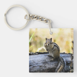 Gazing Chipmunk Single-Sided Square Acrylic Keychain