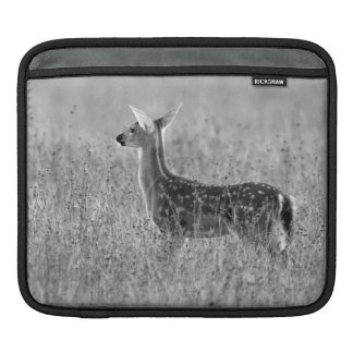 Gazing Fawn Sleeve For iPads