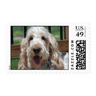 GBGV Postage Stamp