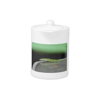 Gecko 9 teapot