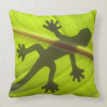Gecko Almohada