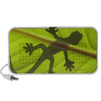 Gecko Mini Altavoces