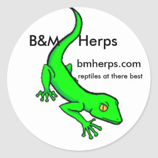 gecko, B&M    Herps, bmherps.com, reptiles at t... Classic Round Sticker