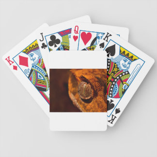 Gecko Bicycle Playing Cards