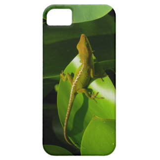 Gecko iPhone 5 Cover