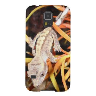 Gecko con cresta del bebé carcasa de galaxy s5