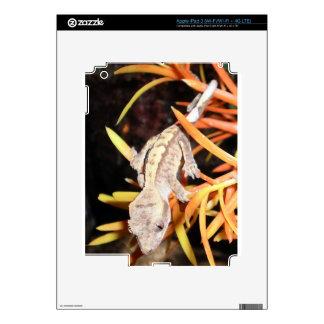 Gecko con cresta del bebé pegatina skin para iPad 3