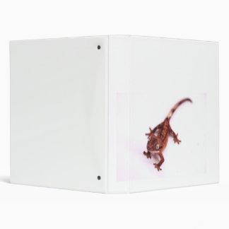 Gecko con cresta que camina en un ángulo
