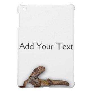 Gecko de Brown en el fondo blanco