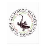 Gecko de las islas de las Islas Galápagos Tarjeta Postal