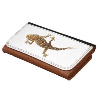 Gecko de tierra de Madagascar (pictus de Paroedura