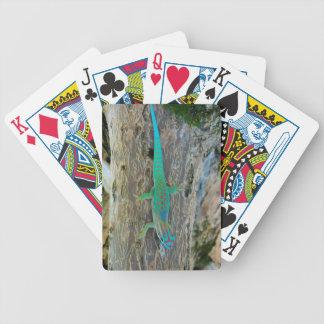 Gecko del día del bosque de la tierra baja de barajas de cartas