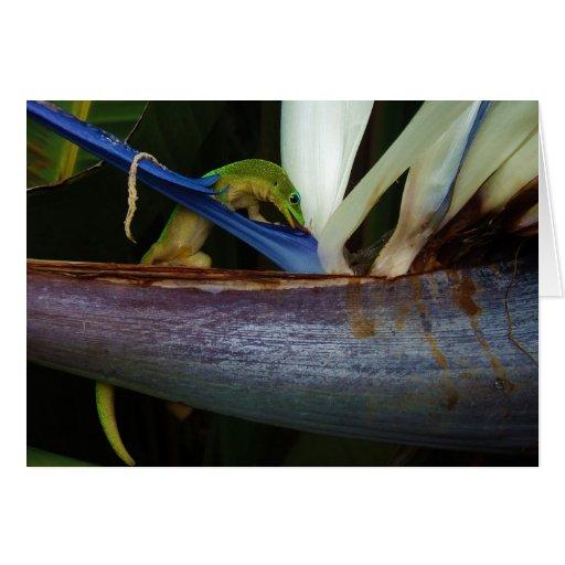 Gecko del día del polvo de oro en la flor tarjeta de felicitación