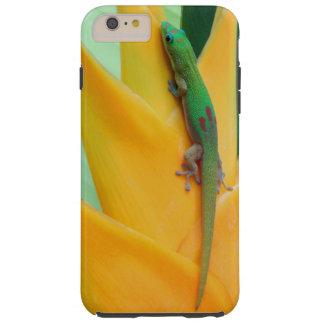 Gecko del día del polvo de oro en un Heliconia Funda Para iPhone 6 Plus Tough