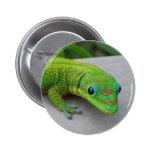 Gecko del día del polvo de oro - haga una prueba y pin redondo 5 cm